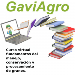 Curso virtual fundamentos...